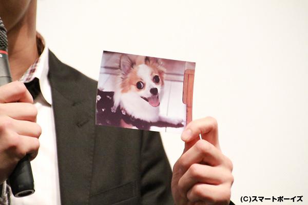 中河内さんの分身、愛犬「空(くう)」
