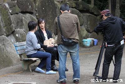 保護犬の現状と保護団体の抱える問題について、Happy Paws代表に加藤さんがインタビュー。その模様は、劇場で購入できる『しっぽのなかまたちナビゲートDVD』に収録されています