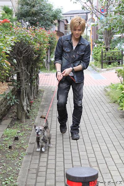 お散歩のパートナーはスモーキー。尻尾をブンブン振って、元気に細川さんを先導!