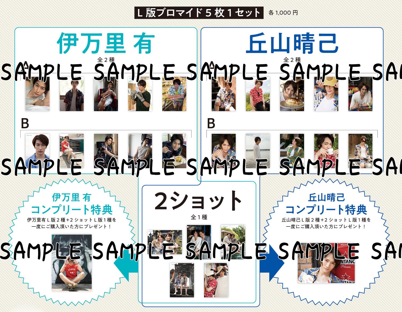 L版ブロマイド 5枚1セット 1,000円 & コンプリート特典