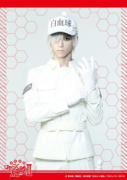 白血球(好中球)役:北村 諒さん