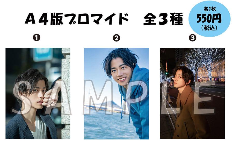 A4版ブロマイド 各550円